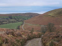 Rhulen to Newchurch image 2