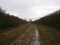 Aldwincle Lane image 2