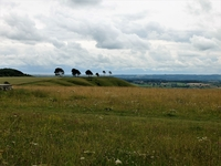 Roundway Down image 3